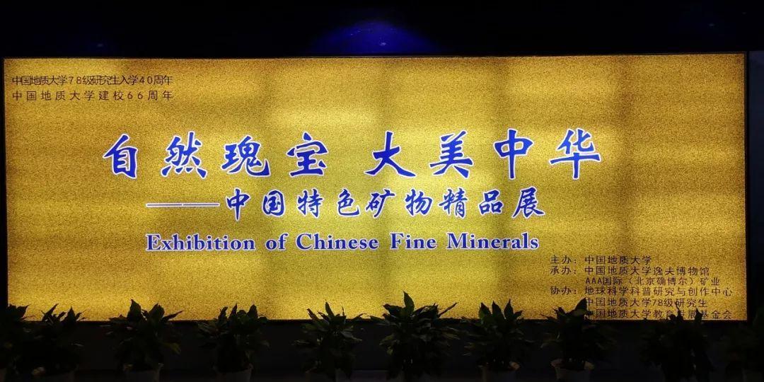 武汉中国特色矿物精品展